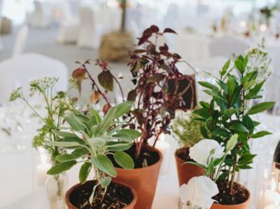 eko-wesele-dekoracje-wedding-planner-warszawa