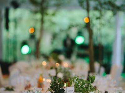 wedding-planner-organizacja-wesel-warszawa