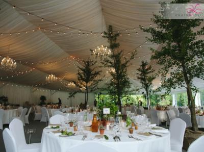 wesele-lesne-eko-palac-rozalin-wedding-planner-warsaw
